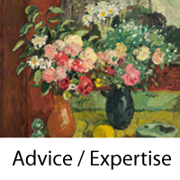 Advice and Expertise